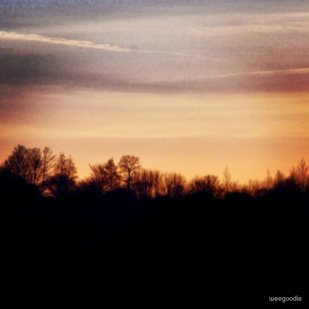Red Sky by weegoodie