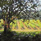 Vineyard paintings by Karen Ilari by Karen Ilari