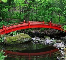 Red Bridge by CMCetra