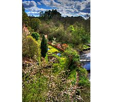 By the Linhouse Water Photographic Print