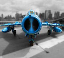 Blue airplane by cgarphotos