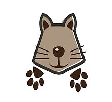 Raccoon by jjabarms