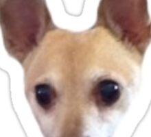 Chihuahua Head Sticker