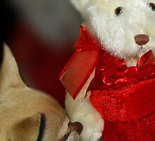 Teddy Bear Love by Doty