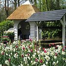 The Wishing Well - Keukenhof Gardens by Kathryn Jones
