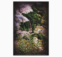 wildflowers over cliff edge Johnston's Ridge Kids Tee