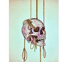 Lovely Bones Photographic Print