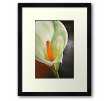 Large Calla Lily Framed Print