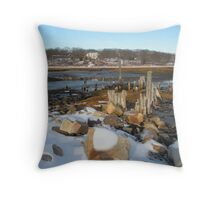 Winter Thought Throw Pillow