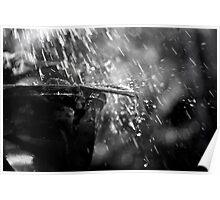 Rain on a Vase Poster