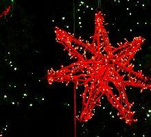 Christmas Lights by TashaStrachan