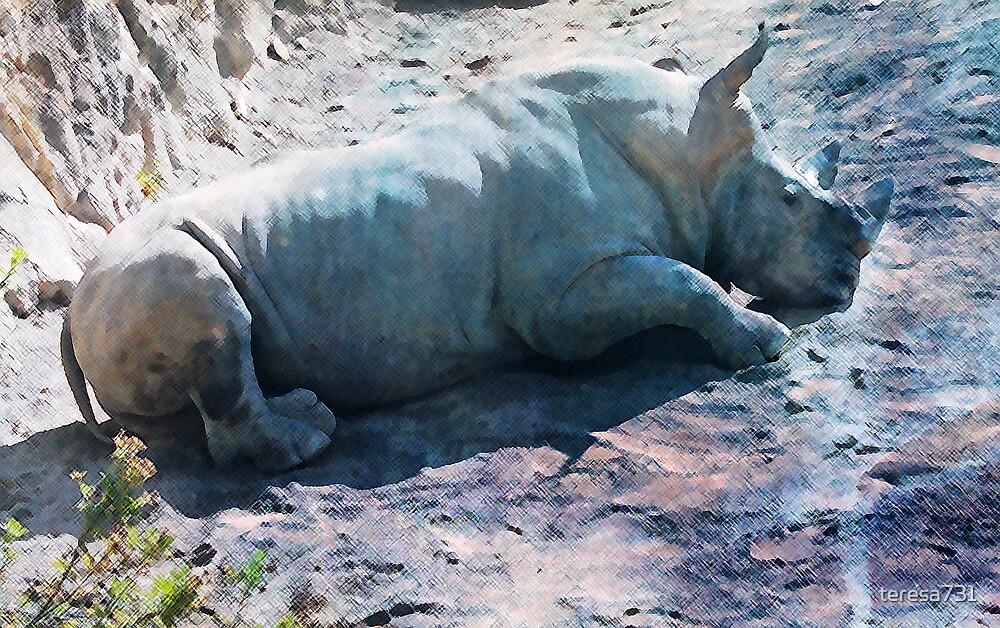 Rhino by teresa731