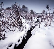 Black Winter Stream by Andy Freer