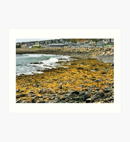 Point Porpoise, Maine Art Print
