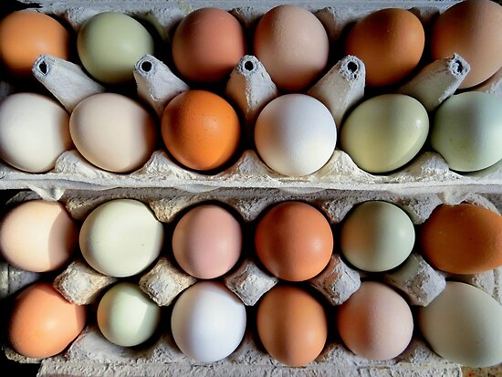 The Incredible Edible Egg...Fresh Pickins by trueblvr