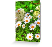 Daisy 6 Greeting Card