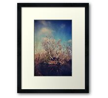Just Trying to Survive Framed Print