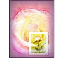 Message in Pastel Photographic Print