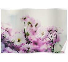Dainty Flowers Poster