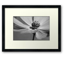 From the Edge Framed Print