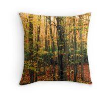 HARDWOOD FOREST,AUTUMN Throw Pillow
