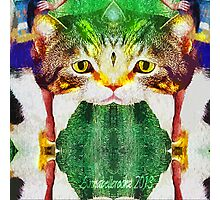 Fractal cat Photographic Print