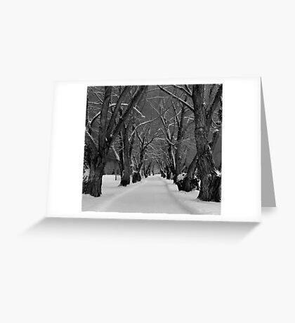 The Road Greeting Card
