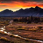 Blacktail Sunset in Grand Teton by Mark Kiver