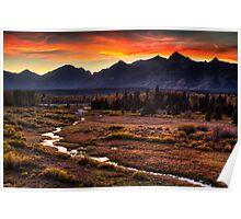 Blacktail Sunset in Grand Teton Poster