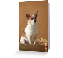 Sitting Pretty ~ Greeting Card
