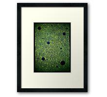 The War is Green Framed Print