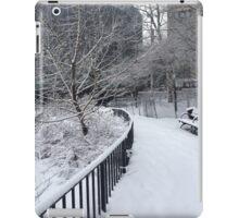 Freezing Point iPad Case/Skin