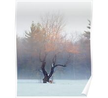 Apple Tree in the Fog Poster