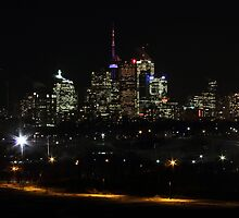 Night Skyline from Riverdale by Susan Drysdale