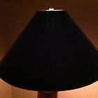 My life as a lamp shade. by Julie Van Tosh Photography