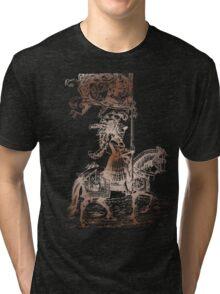 Knight in Shining Armor Tri-blend T-Shirt