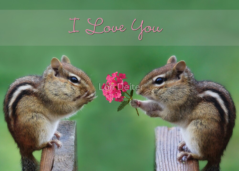 Chippy - I Love You by Lori Deiter