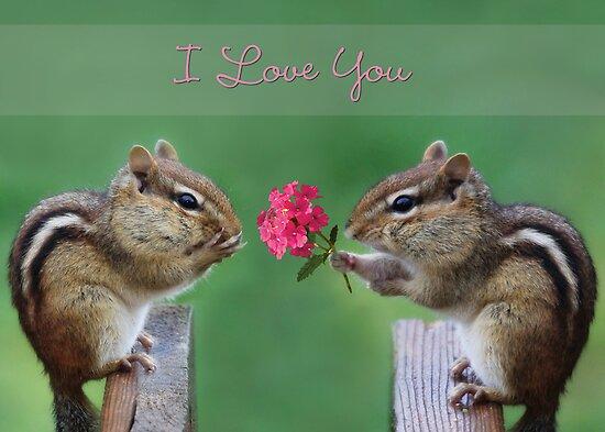Chippy - I Love You by Lori Deiter