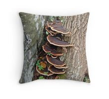 Turkey Tail Bracket Fungus - Basidiomycota Throw Pillow
