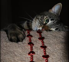 I Caught Your Heart!! by jodi payne