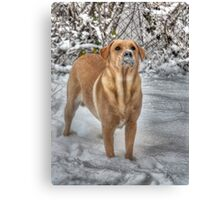 Remember that scene from Scarface? Canvas Print