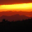 BACKYARD SUNSET by ANNABEL   S. ALENTON