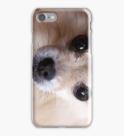 Precious Pomeranian iPhone Case/Skin