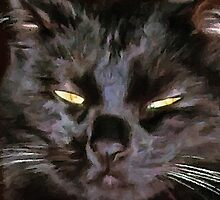 ACEO Abstract Black Cat 10 by jkgiarratano