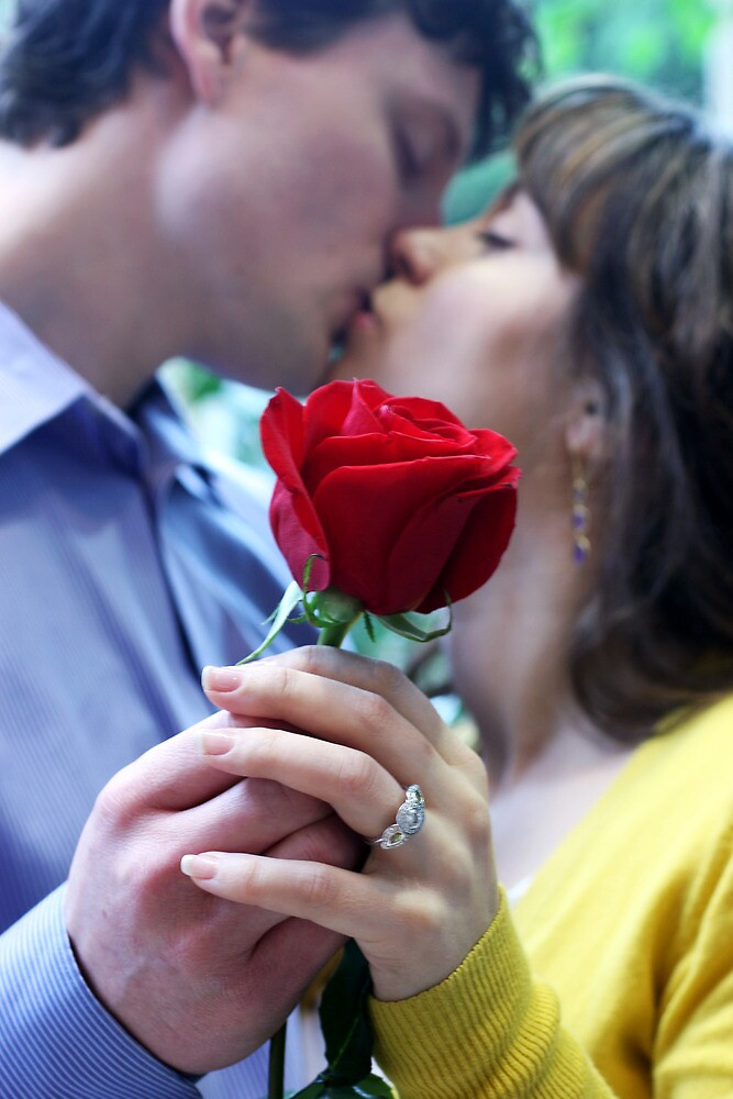Red Rose Romance by Tiffany Muff