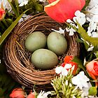 Spring Eggs in a Nest by Tiffany Muff