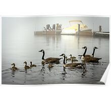 Fogbound Geese Poster
