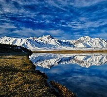 Alkali Reflection by Cat Connor