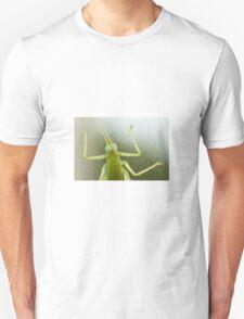 Cricket Closeup T-Shirt