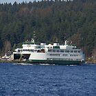 Ferry off Bremerton by EvansKelly